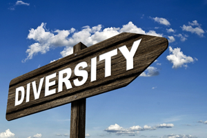 Five Strategies Law Firms Can Implement to Increase Firm Diversity